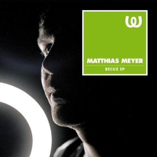 Matthias Meyer - November Rain (Mario Basanov Remix)