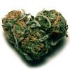Love Is So Good - General Riddim