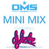 DMS MINI MIX WEEK #114 DJ LEZLEE