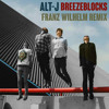 Alt-J - Breezeblocks (Franz Wilhelm Remix) [FREE DOWNLOAD]