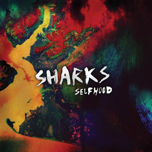 Sharks - 22