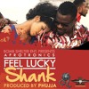 Shank - Feel - Lucky - Afrotronics