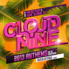 Top 40 Cloud Nine Anthems of 2013 | Mixed by Press Play & Some Blonde DJ