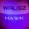 Download Wausz - Hawk (Original Mix) sc Mp3