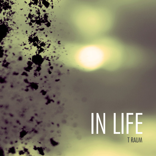 T Raum - In Life feat. Simple One