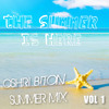The Summer Is here ! - Hot Songs of 2014 VOL 1 (Mixed By Oshri Biton)