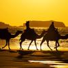 Moroccan Desert(prod By Black Son Beats)