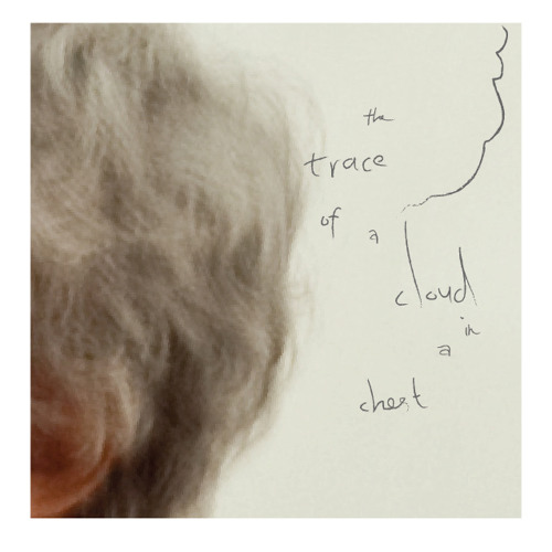 The Trace of a Cloud in a Chest / Produced by Weidong Lin