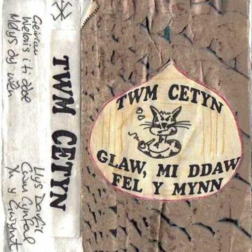 Llys Darfil, gan Twm Cetyn