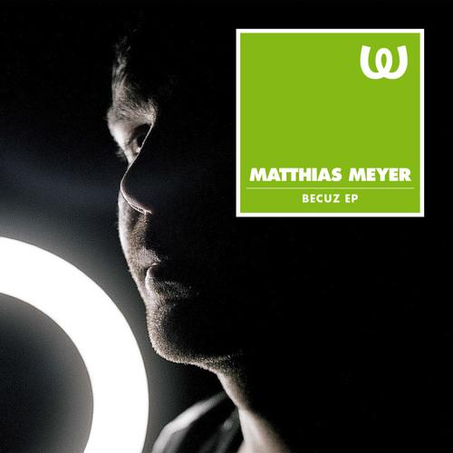 Matthias Meyer - November Rain
