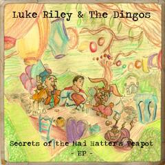 Luke Riley & The Dingos - Kittens And Thunderbolts