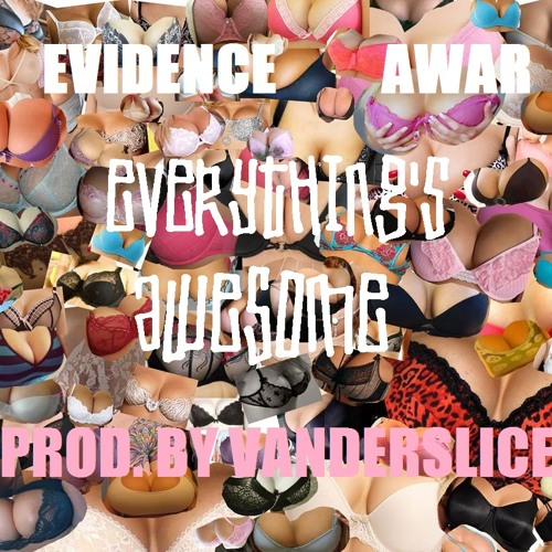 Evidence & Awar - Everything's Awesome