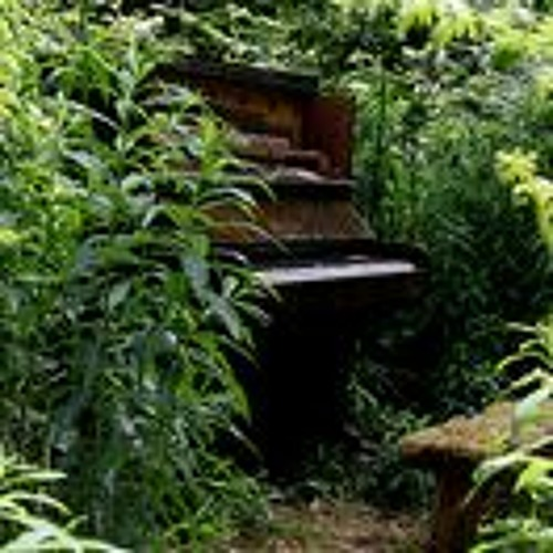 Sam Bailey - Piano in the Woods 2: milk frothing whisk (2013-06-09)