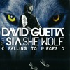 Project #4 - David Guetta - She Wolf (Falling To Pieces) ft. Sia (Dirty Echo Remake) [FREE DOWNLOAD]