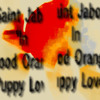 Saأnt Jaboأ أn Blood Orange Puppy Love