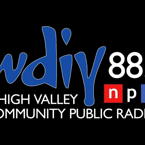 Ernest Hilbert Interviewed by Ken Michaels on NPR-Affiliate WDIY 80.1 April 2013 for Musings