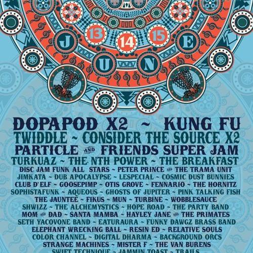2014 Disc Jam Music Festival
