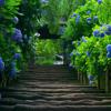) Nature.MP3
