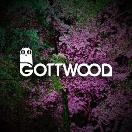 Gottwood DJ Competition 2014 - Big Phat Mike & Baby Dave