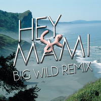 Sylvan Esso - Hey Mami (Big Wild Remix)