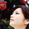 Natsukawa Rimi - Nada Sou Sou - String Quartet (With Koto)