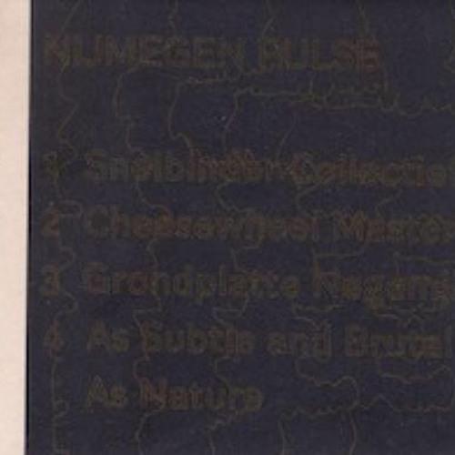 anla courtis & bj nilsen - brombron 7: nijmegen pulse (shop excerpts)