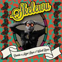 Davido - Skelewu (Major lazer x Wiwek remix)