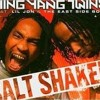 Ying Yang Twins Shake It Like A Salt Shaker And Tell Me When To Go Remix