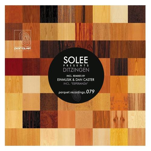 solee - ditzingen (dan caster remix - cut) / parquet recordings