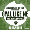 Aquadrop & Big Fish - Gyal Like Me Feat. Stush (Preview) OUT NOW!