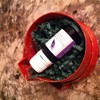 Aromatic Gift Giving (L-Stimulate, Sesso Dolce, Passion Sticks)
