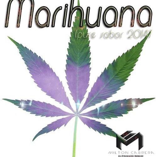 Milton Cabrera - Marihuana (Pure Sabor 2014)