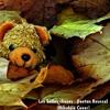 Les Belles Choses - Gaetan Roussel (Mikulélé Cover)