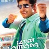 I Would Do Anything For You- Violin BGM / Moblie Ringtone-Maan Karate