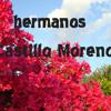 Castillo Moreno CASETE IECE