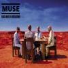Muse - Exo Politics (cover).mp3