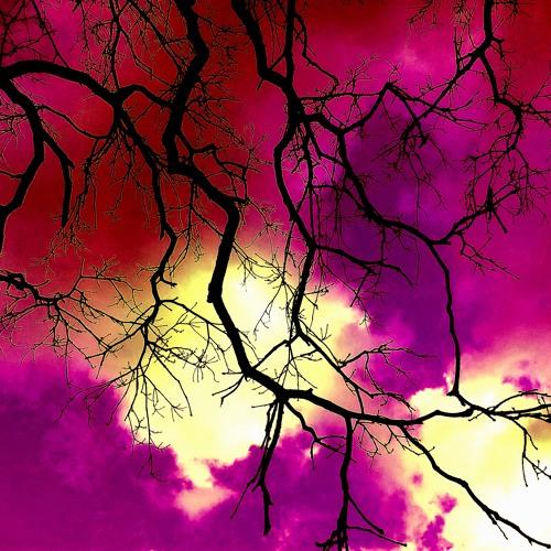 The Twilight Apple Tree