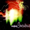 Enjoy Incubus: A Tribute To Incubus… Deep Inside