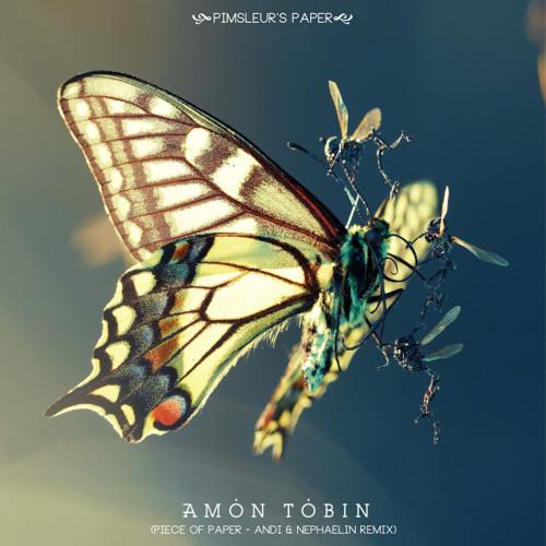 Amon Tobin: Pimsleur's Paper (Andi & Nephaelin Remix)