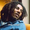 Jump Jump Nyahbinghi Bob Marley (DjNumber1)