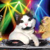 ELECTRO CLUB MiX( Music Junky 6OH!4 )