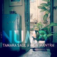 Tamara Saul x New Mantra Numb Artwork