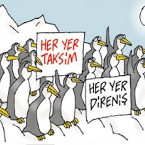 CNN Türkten penguen isteğim