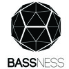 BASSNESS - PROGRESSIVE // SET LIVE@2014