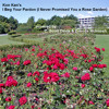 I Beg Your Pardon (I Never Promised You a Rose Garden) [with Zoenda McIntosh]
