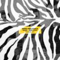 Freddie Gibbs & Madlib Shame (BadBadNotGood Remix) Artwork