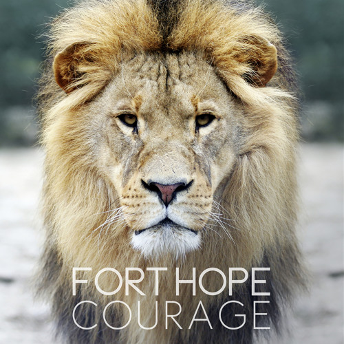 10 Fort Hope - The Rapture (Acoustic)