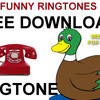 Duck Call Ringtone FREE to download and use on your PHONE
