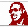 Stevie Wonder - Superstition (High Heels Breaker Remix)