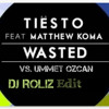 Tiesto feat. Matthew koma vs. Ummet Ozcan - Wasted (DJ ROLIZ Edit)